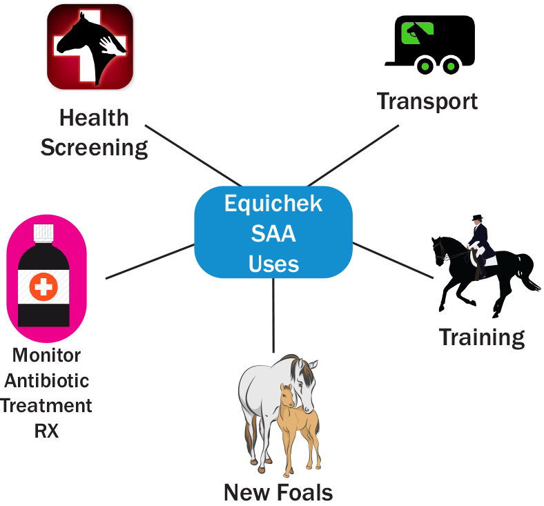 EquiChek-SAA has multiple infection detection uses