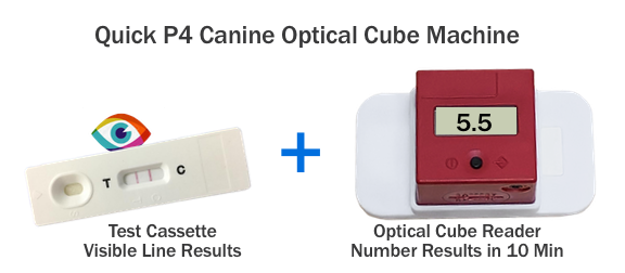 Quick P4 Equine Optical Cube Machine